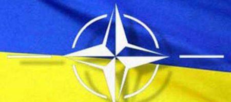 Партнерство расширенных возможностей: что для Украины значит договор с НАТО