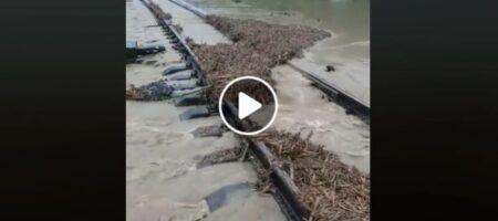 """Кошмар на Прикарпатье: потопом """"смыло"""" железнодорожную колею (ВИДЕО)"""
