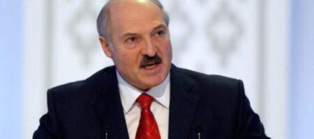 У сына Лукашенко обнаружены 840$ млн в Швейцарии: лидер Беларуси намерен поговорить с Путиным