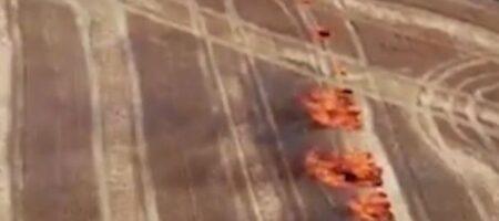 Масштабные пожары на Луганщине: военные нашли возможного поджигателя (ВИДЕО)