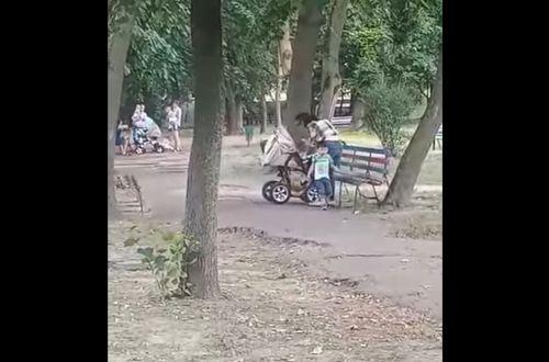 Мать-алкоголичка избивала 10-месячного младенца прямо в парке Бердичева (ВИДЕО)