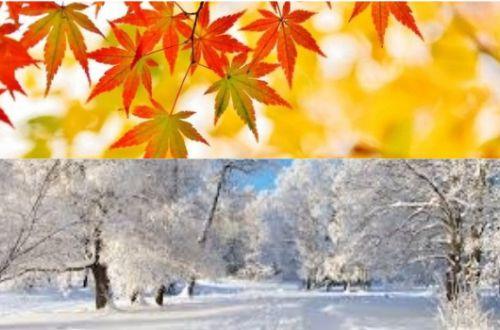 Осень и зима готовят украинцам сюрпризы. Прогноз от ведущих синоптиков