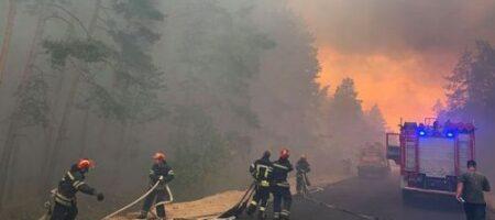В Украине объявлен чрезвычайный уровень пожарной опасности