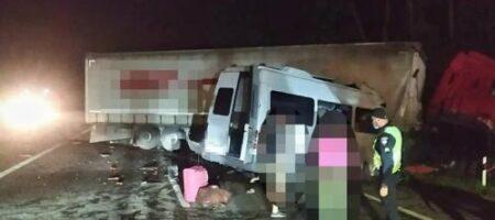 Десятки погибших и раненых: на трассе под Киевом произошло ужасное ДТП (ФОТО)