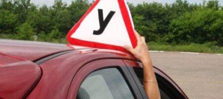 На права придется сдавать повторно: кого ждет автошкола на переподготовку
