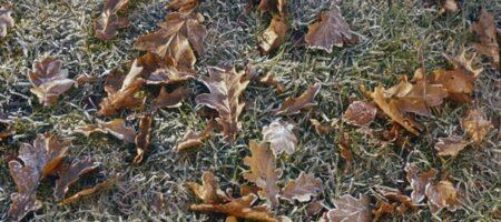 В Украину идет похолодание и заморозки