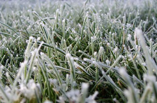 В Украине ударят заморозки: синоптик рассказал, где уже сегодня ждать снега