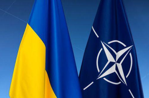 Зеленский выполнил одно из условий для вступления в НАТО