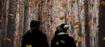 Астрологи назвали пять самых опасных дней в ноябре