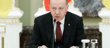 Война: Эрдоган призвал к бойкоту французских товаров