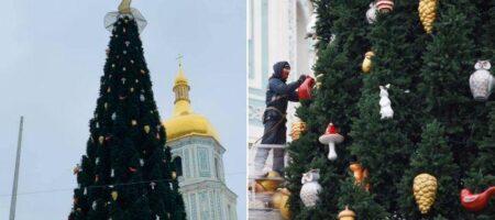 Страсти с главной новогодней елкой в Украине! Шляпу таки снимают?
