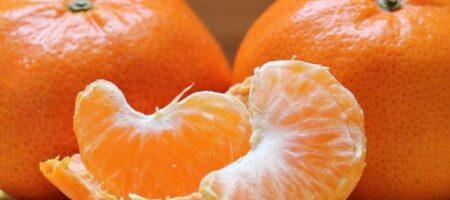 Как узнать сладкие мандарины и не купить кислые