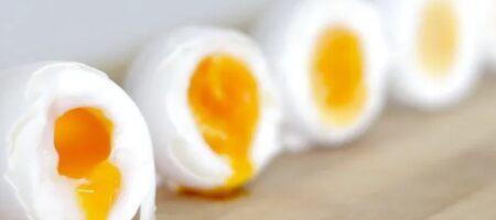 Как варить яйца по науке: выверенный рецепт
