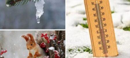 В Украину идет резкое потепление – уточненный прогноз синоптиков