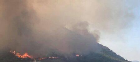 Украинцы публикуют кадры масштабных пожаров в Турции