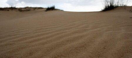 Ученый: юг Украины станет пустыней через 30 лет