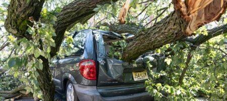 В США в два раза выросло число жертв урагана Ида