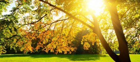 Конец бабьего лета: последний теплый день осени 21 сентября