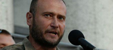 «Мерзавцы, пид***сы и враги Украины». Ярош жестко атаковал Зеленского из-за обысков у Маруси Зверобой