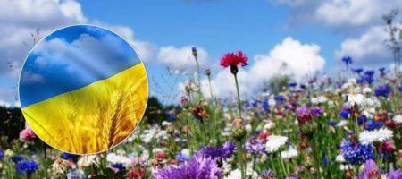 """Гороскоп на 2020 год: Украине обещают """"благоприятный сдвиг"""""""