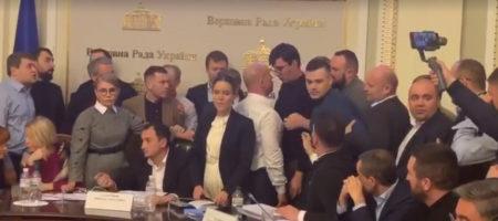 """Кива с разгона """"атаковал"""" елку в Верховной Раде (ВИДЕО)"""