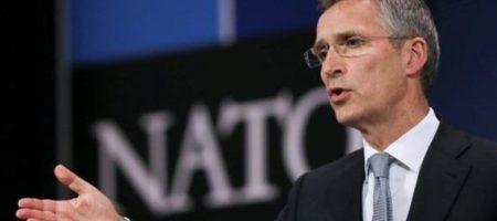 В НАТО не на шутку встревожились: собирается экстренное заседание по Сирии