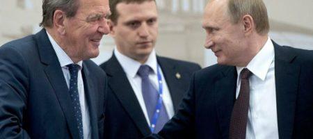 """""""Никогда не вернет Украине"""": экс-канцлер Германии оскандалился заявлением о Крыме"""