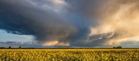 Штормовой ветер с градом: украинцев предупредили о резком ухудшении погоды