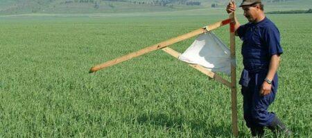 Фермеров задавят налогом: в 15 раз больше придется отдать за пай