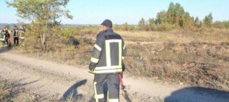На Луганщине пожарным удалось потушить возгорание, возникшее из-за обстрела (ВИДЕО)