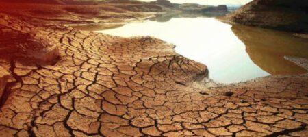 Кульбида рассказал о бедственном положении жителей Крыма из-за засухи