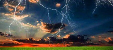 Молния с грохотом взорвала дерево: люди в шоке, никогда такого не видели (ВИДЕО)