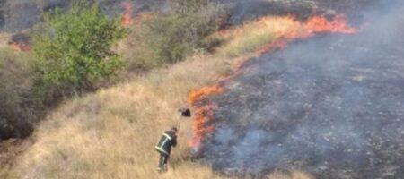 Пылает все вокруг: на Николаевщине произошел масштабный пожар