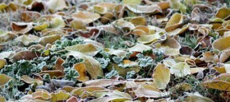 Заморозки после дождей: синоптик дал прогноз погоды на октябрь