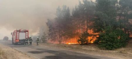 На Луганщине решили найти виновных в пожарах: возбуждено 10 уголовных производств