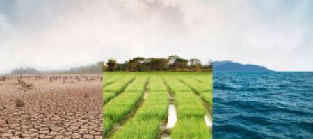 Народный синоптик назвал год, когда в Украине начнется сильная засуха