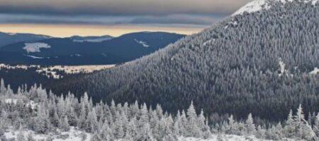 Зима пришла в Украину! Буковель и Драгобрат засыпало снегом (ФОТО)