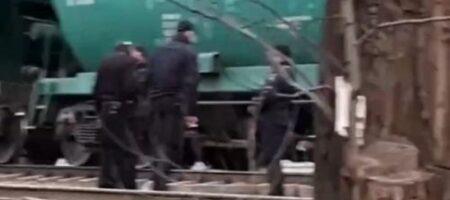 Жуткая трагедия на железнодорожном переезде: женщина попала под поезд и осталась без ноги