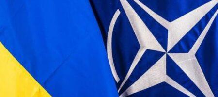 Польша обвинила РФ в срыве предоставления Украине ПДЧ в НАТО