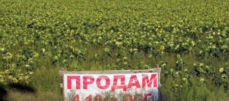 Продать сельхозземли кому попало не выйдет — закон