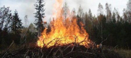 В Житомирской области трое пенсионеров жгли сухую траву и оказались в больнице с ожогами тел до 90%