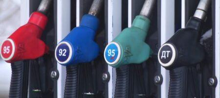 Цены на бензин ограничил Кабмин (ИНФОГРАФИКА)