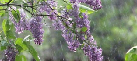 Синоптики обновили прогноз погоды на ближайшие дни