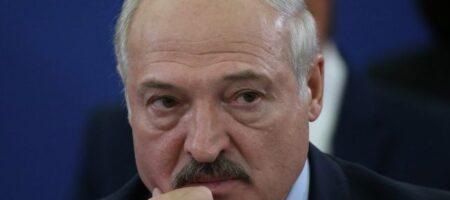 """""""Лукашенко будет больно"""": Украина резко отреагировала на приглашение боевиков """"ЛНР"""" в Беларусь"""