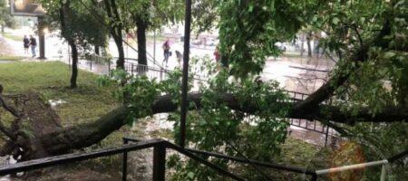 Львов накрыла мощная буря: город утопает в воде (ВИДЕО)