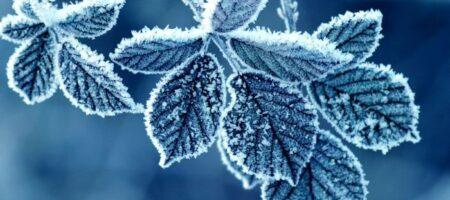 Стало известно, какая зима ждет украинцев в этом году