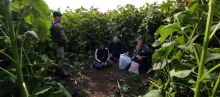 Пограничники задержали криминальных авторитетов на границе с Россией