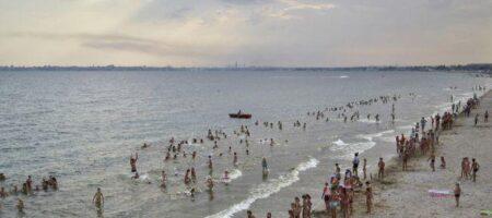 Отдыхающих на Азовском море настигла новая напасть: что это и как уберечься (ФОТО)
