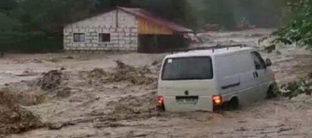 Паводок на Закарпатье разрушил дороги и подтопил дома — видео стихии