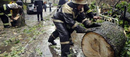 Украиной пронёсся ураган (ВИДЕО)